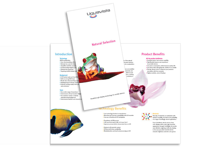 The Crunchers Brochure